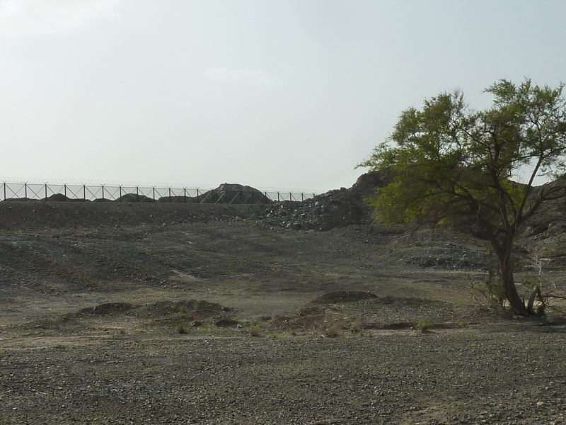 The border fence, about 400 m from the confluence point