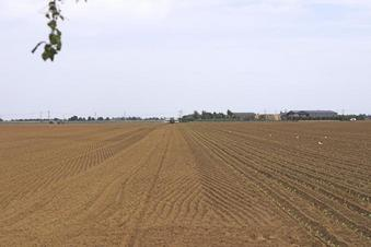#1: General view - crop planting taking place.