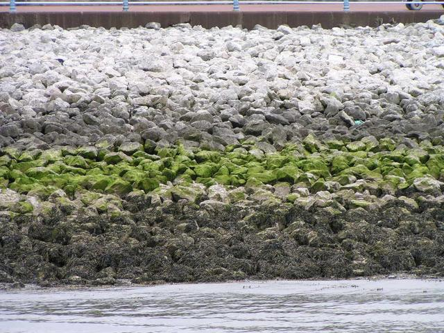 different water levels can be seen at the embankments