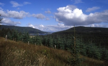 #1: view to the Holy-Loch