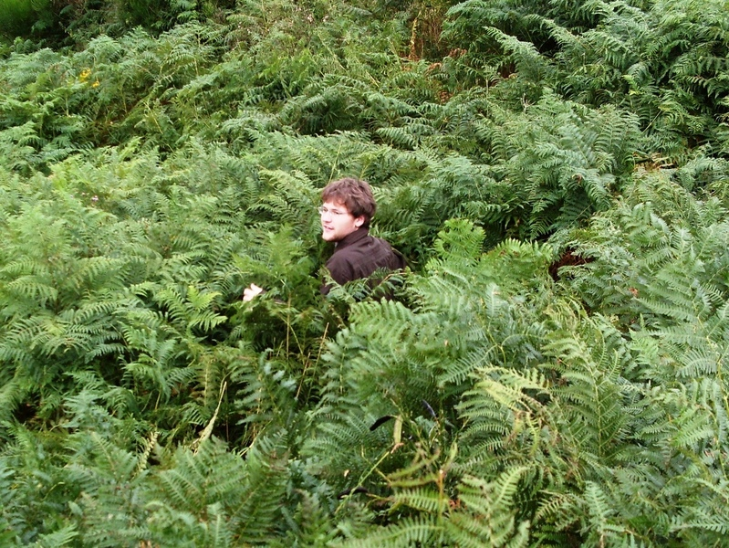 John in deep bracken close to road