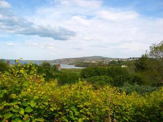 #1: The Confluence - View to the East from 50m up a Hill