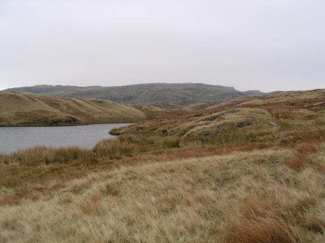 Approaching confluence just to the right of centre on the knoll