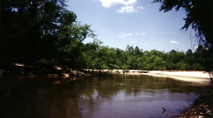 The beautiful Pea river, a short walk South of the confluence. (Water towards bottom of picture, sandy beach in middle.)