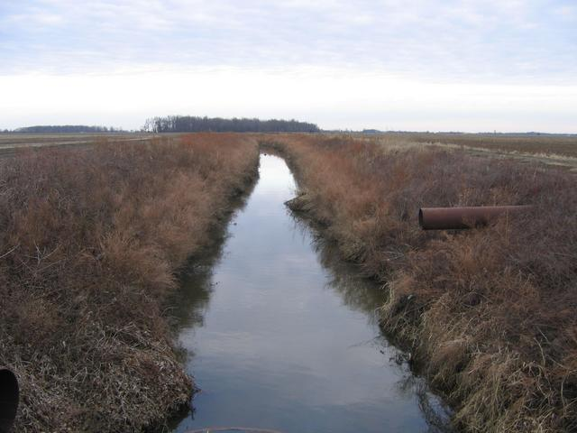 Picture of irrigation ditch from the gravel road