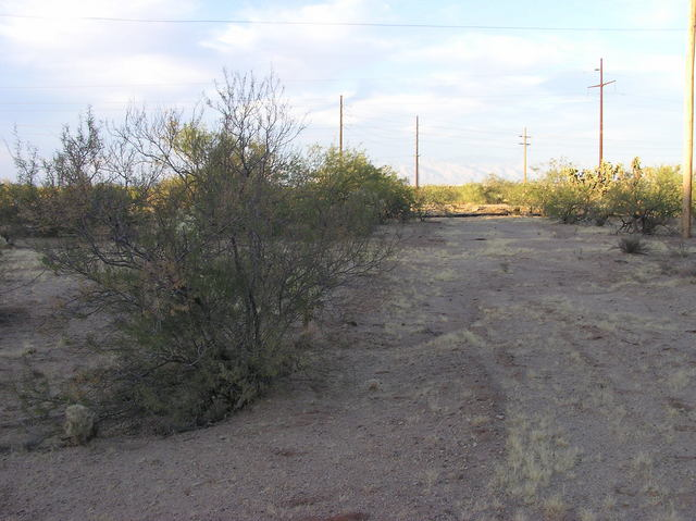 View north (towards Pima Mine Road)