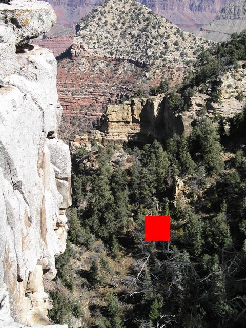The red box indicates the confluence location