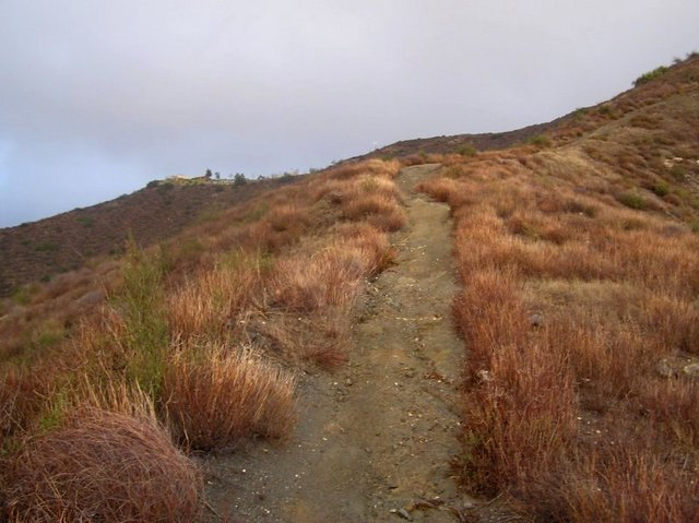 Trail atop the ridge to the west