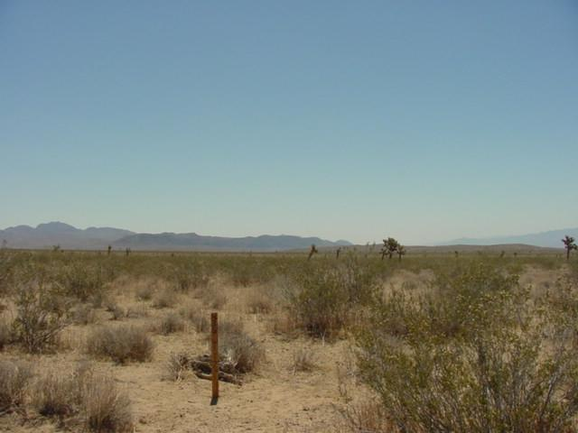East toward the Calico Mountains