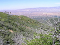 #2: View north (towards the Cuyama Valley)