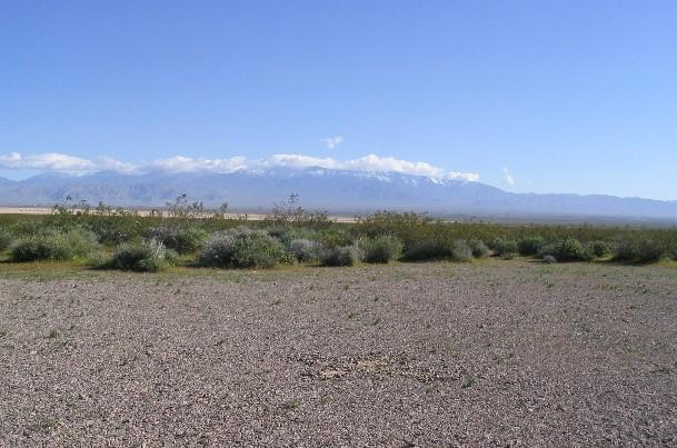 The Spring Mountains - and 11,920-foot Charleston Peak - to the northeast of the confluence, marked by an 'x'.