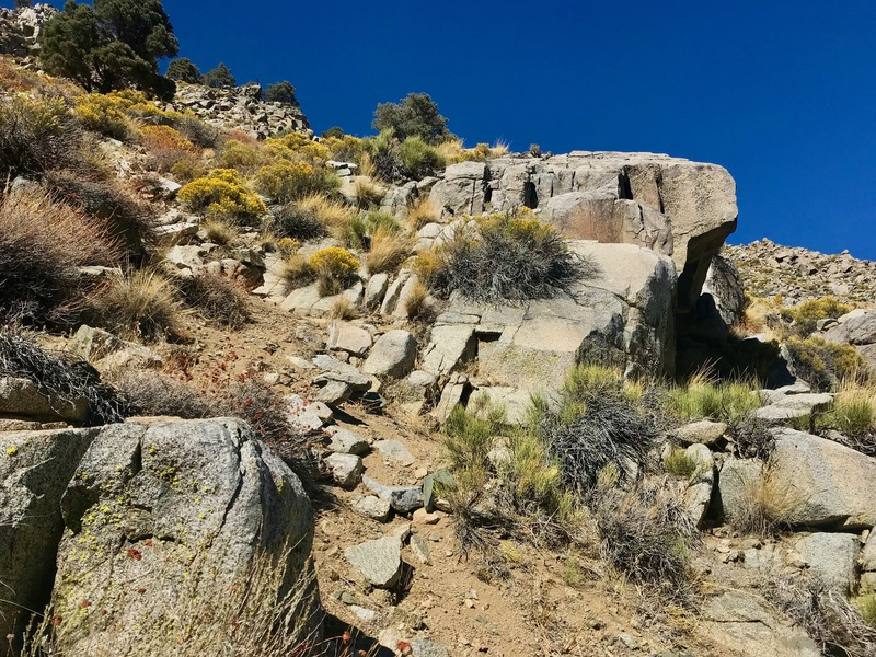 The confluence point lies within a rock-strewn drainage, at almost 6000 feet elevation