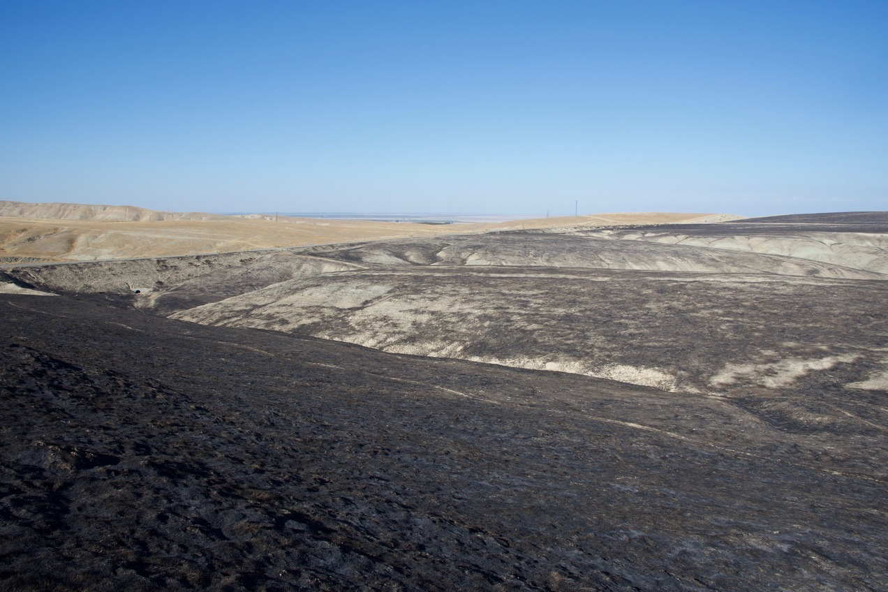 The confluence point lies on a hillside, scorched by a grass fire two months earlier.  (This is also a view to the North, towards Interstate 5 and the Central Valley.)