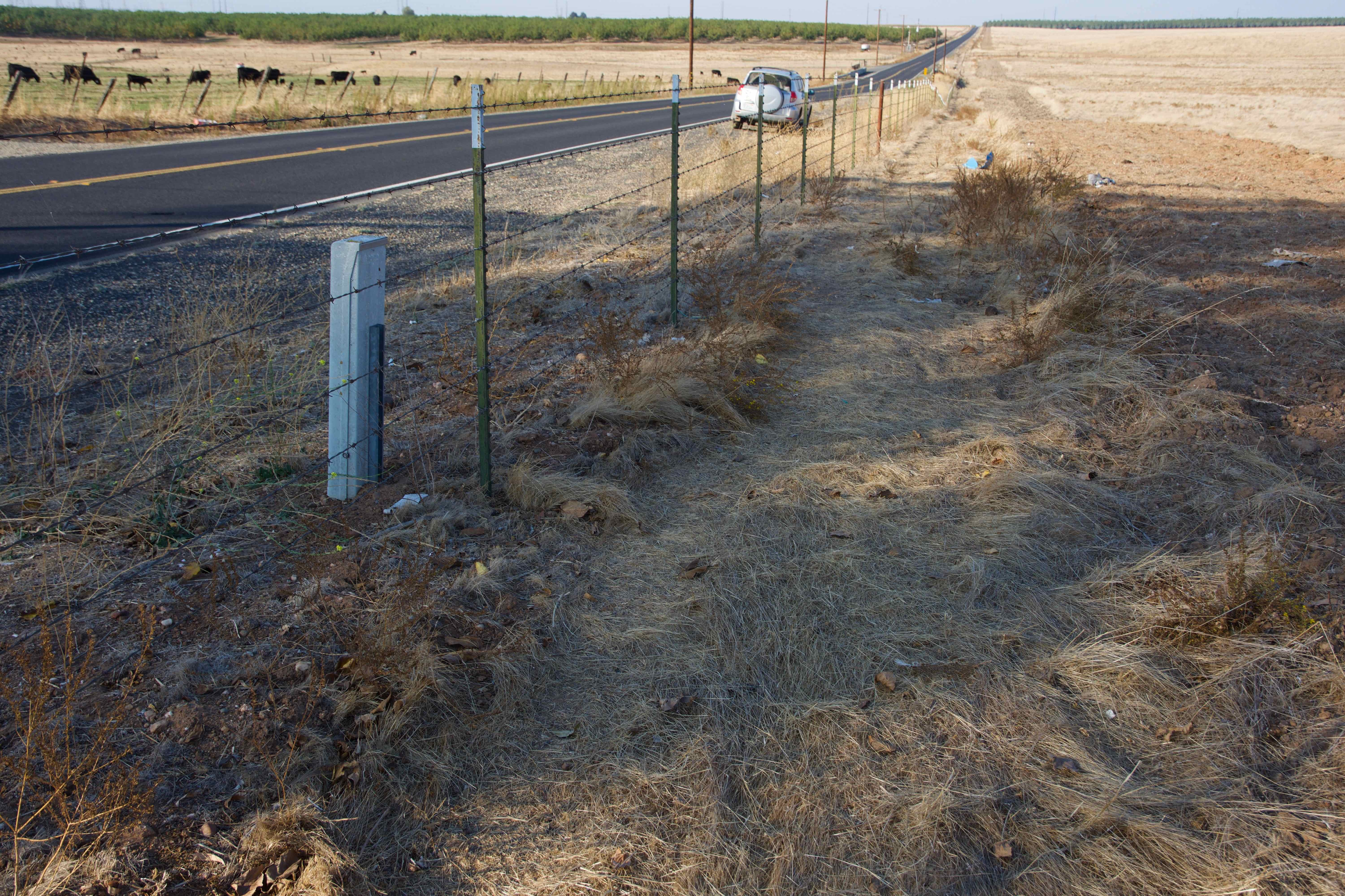 The confluence point lies just inside this farm fence, next to the Escalon-Bellota Road