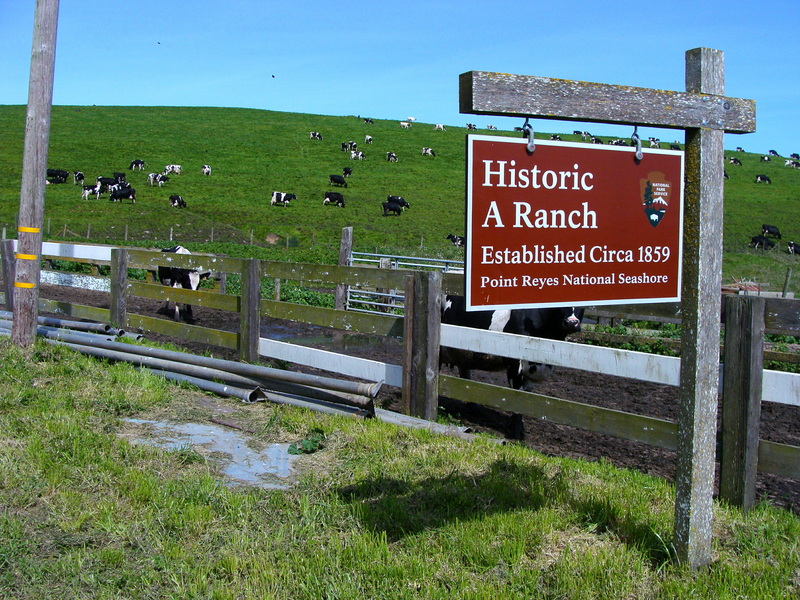 A Ranch:  150 years old and going strong…