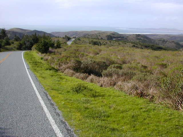 The road through Point Reyes National Seashore