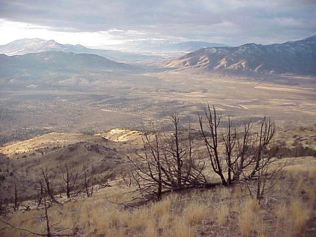 View to the south from the confluence, Nevada at left, California at right.