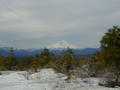 #5: Mt. Shasta from Big Bend Road