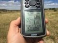 #7: GPS reading at the confluence point.