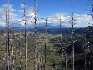 #1: View north from ridge above confluence