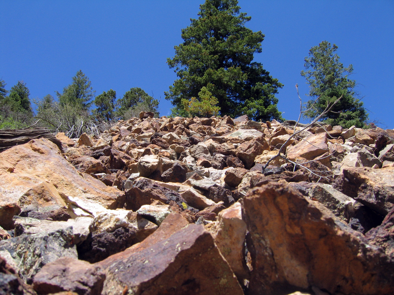 Low aspect view looking up the scree slope.