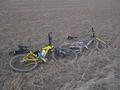 #5: Matt and Ben's mountain bikes.