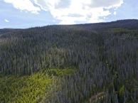 #10: View South, from 120m above the point