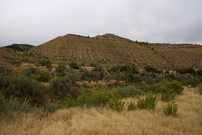 Looking across Cottonwood Creek to the point (0.2 miles away), on top of this hill