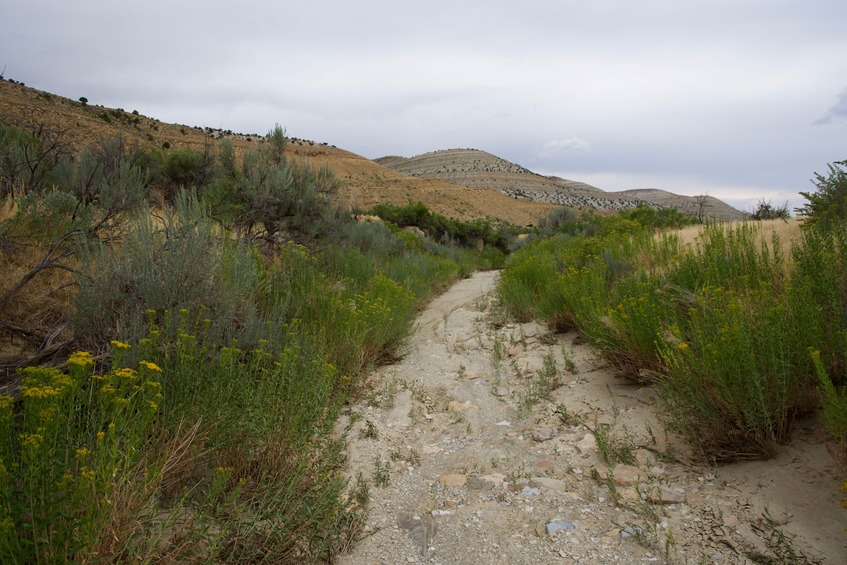 Cottonwood Creek was completely dry during my visit