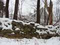 #9: An old stone wall below the hill east of 42N 72W