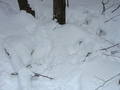 #8: Fresh snow from the day before blankets 42N 73W
