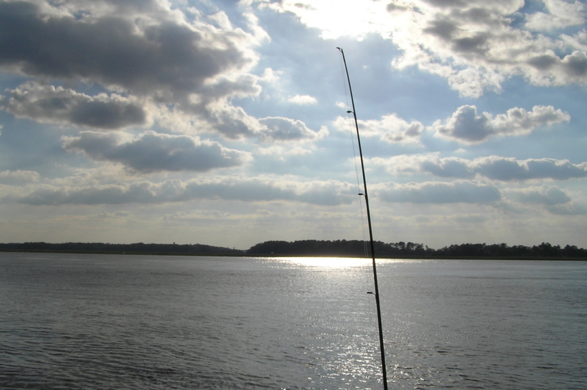 Fishing pole view to the west from the confluence point.