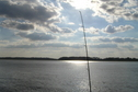 #5: Fishing pole view to the west from the confluence point.