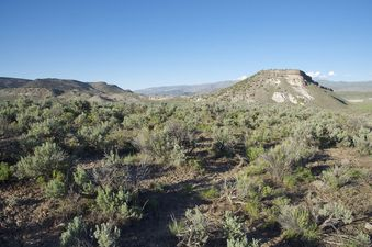 #1: The confluence point lies atop a sagebrush-covered ridge.  (This is also a view to the North.)