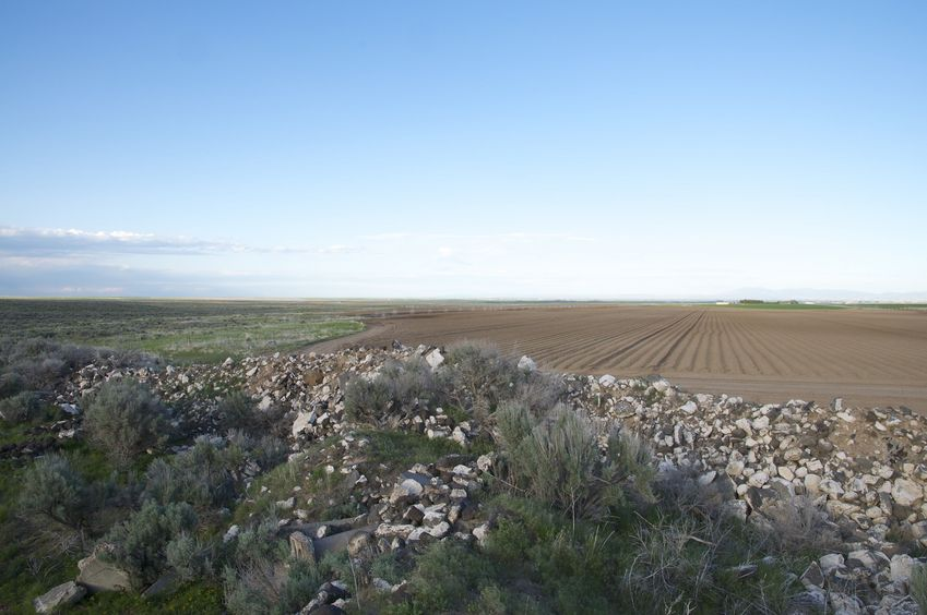 Looking east from near the confluence point, we can see how the area nearby has been cleared for farming