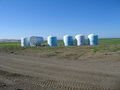#7: Tanks west of confluence