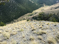 #8: Top of ridge looking down trail
