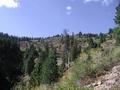 #4: West (from ridge line about 50 - 75 feet above confluence)