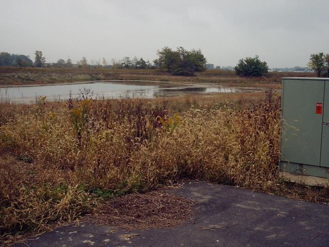 The Swamp of the Confluence, as seen from its Official Parking Space