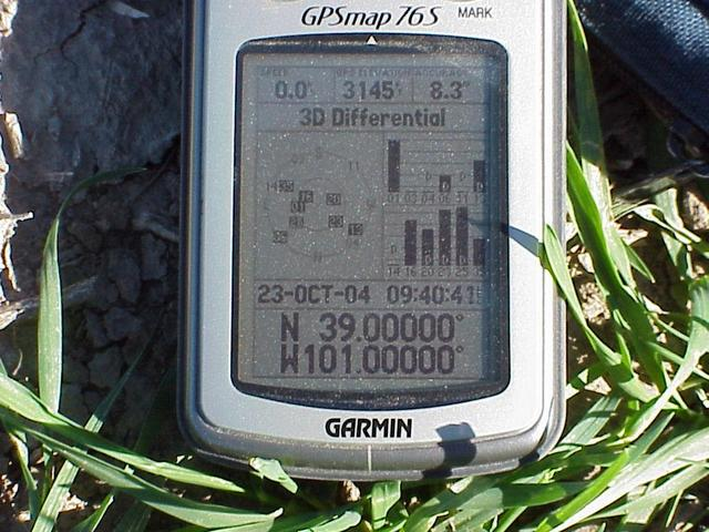 GPS reading at the confluence site with a view of the ground cover.