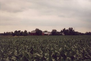 #1: The corn field, with farm buildings