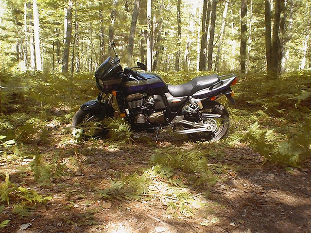 My Kawasaki ZRX1200R, at the end of Townline Rd.