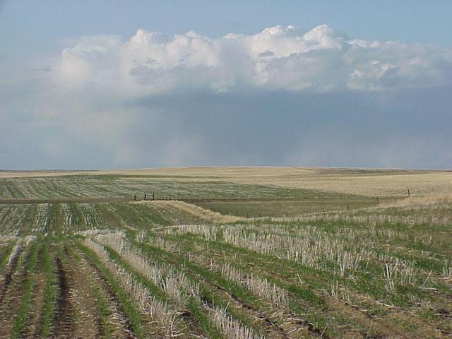 View from the confluence site looking north-northeast across Big Sky Country--Montana.