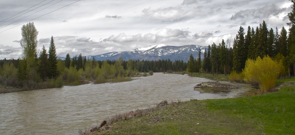 Blackfoot River (North Fork), just west of the confluence point