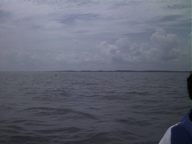 The southern shore of the Albemarle Sound.