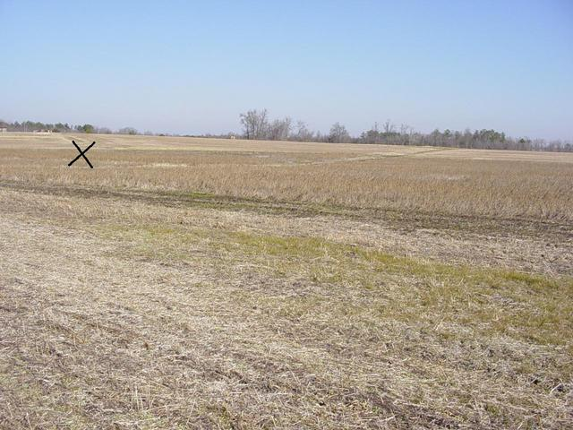 View looking toward the confluence, X marks approximate spot.