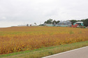 #8: View of Farm from road NE
