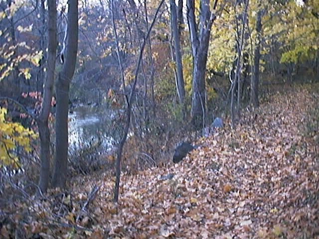 A path on the north bank of the Hackensack River.