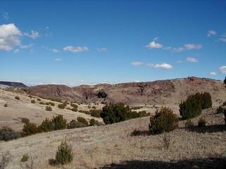 #1: Box Canyon, view to the NE from the confluence