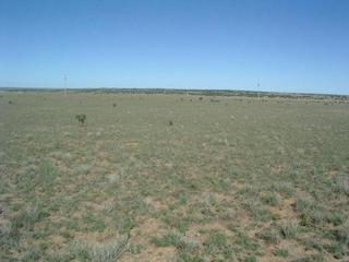 #1: Looking north from N35 W105
